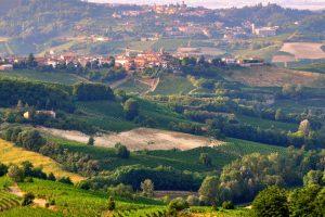 Langhe_landscape_Piemonte