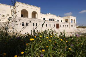 Apulia winery